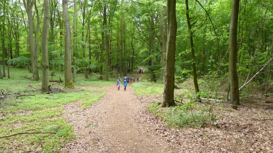 Wanderung im Stadtwald Angermünde