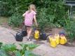 Pflanzen benötigen im Sommer regelmäßig Wasser, auch wenn es geregnet hat, denn meist reicht die Regenmenge nicht aus. Der Garten muss nicht  jeden Tag gegossen werden, dafür aber ausgiebig. Besonders an heißen Tagen ist der Boden so ausgetrocknet, dass das Wasser schnell abfließt und nicht ausreichend im Boden versickern kann