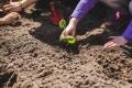 Man kann schon früh gemeinsam mit dem Kind die Natur erfahrbar machen und beispielsweise kleine Pflanzen kaufen und sie gemeinsam eingraben.