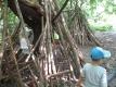 Wir haben eine Hütte aus Baumstämmen gebaut.