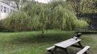 Sitzbank und Trampolin im Garten
