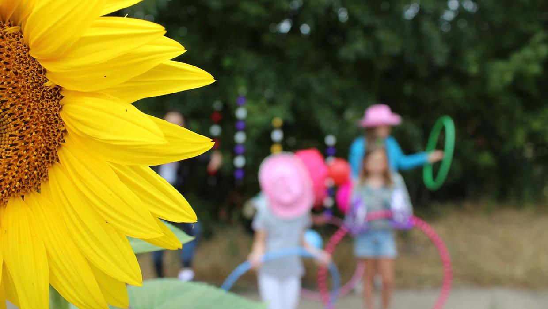 25 Jahre MädchenZukunftsWerkstatt Teltow: Es wird gefeiert